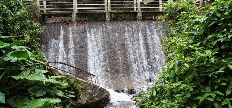 Bano Grande Pool – El Yunque