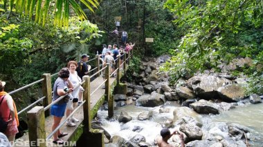 La Mina Waterfall and Big Tree Trail El Yunque