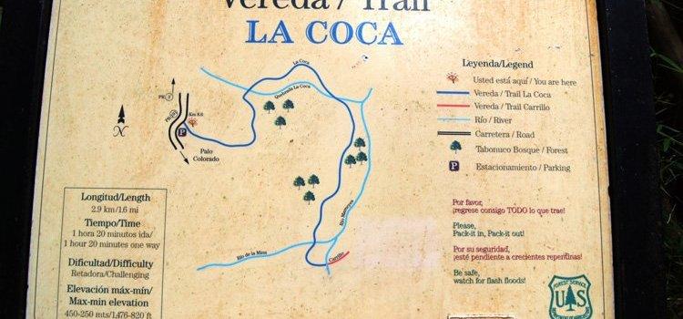 La Coca Trail – El Yunque
