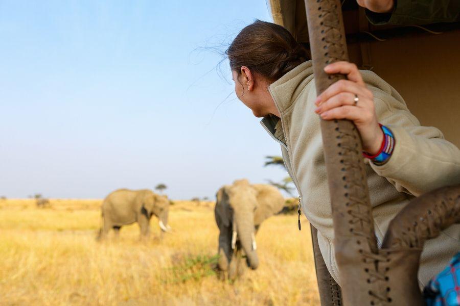 A girl watching elephants during an African safari
