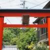 奈良市の漢國神社で御朱印を!年に一度の林神社の饅頭祭とは?