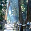 高野山で奥の院や金剛峰寺などの御朱印!生身供の見学で貴重な体験!