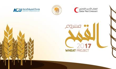 Wheat project launch
