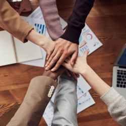 parceria contador sistema fiscal