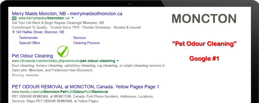 seo services moncton NB