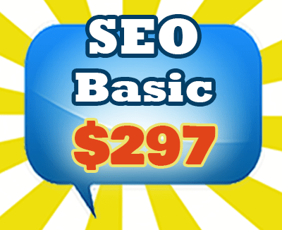 SEO Services BASIC Package