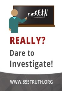 Really Dare to investigate