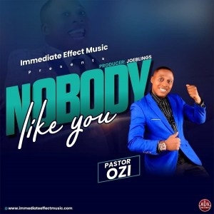 DOWNLOAD MP3: Nobody Like You – Pastor Ozi