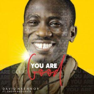 David Nkennor – You are Good Lyrics