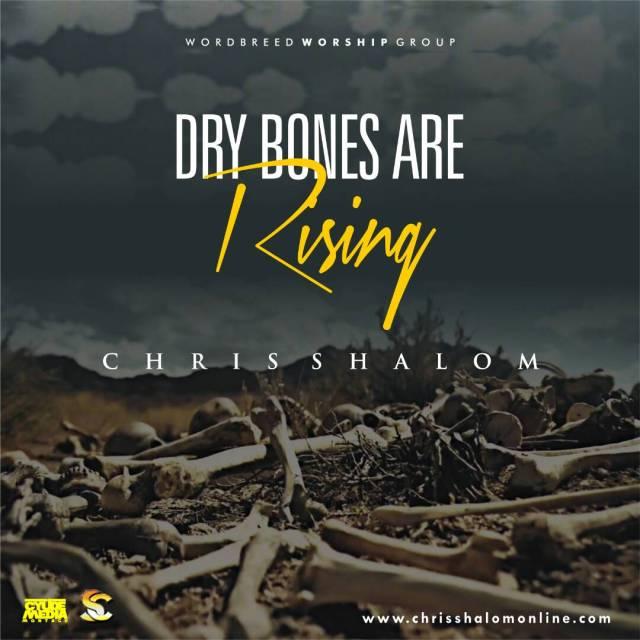 Chris Shalom - Dry Bones are Rising Lyrics