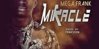 Mega Frank - Miracle
