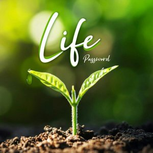 Password – Life Mp3 download