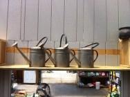 vintage watering cans Gossett Brothers Nursery