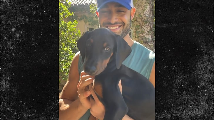 Sam Asghari Gets Britney a New Doberman Puppy for Protection