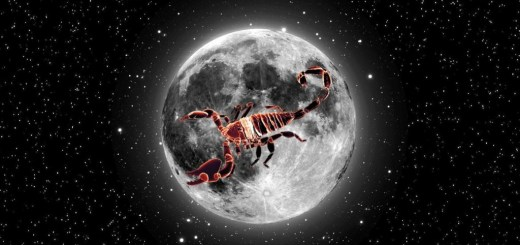 scorpion_on_moon