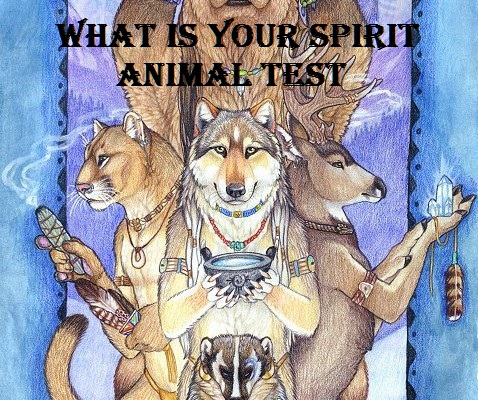 What's Your Spirit Animal? - TEST