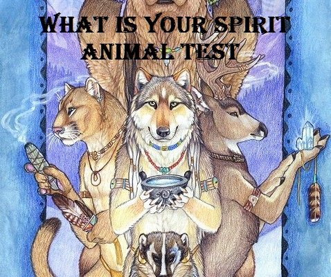 What s Your Spirit Animal    TEST