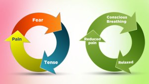conscious-breathing-fear-tense-pain-cycle