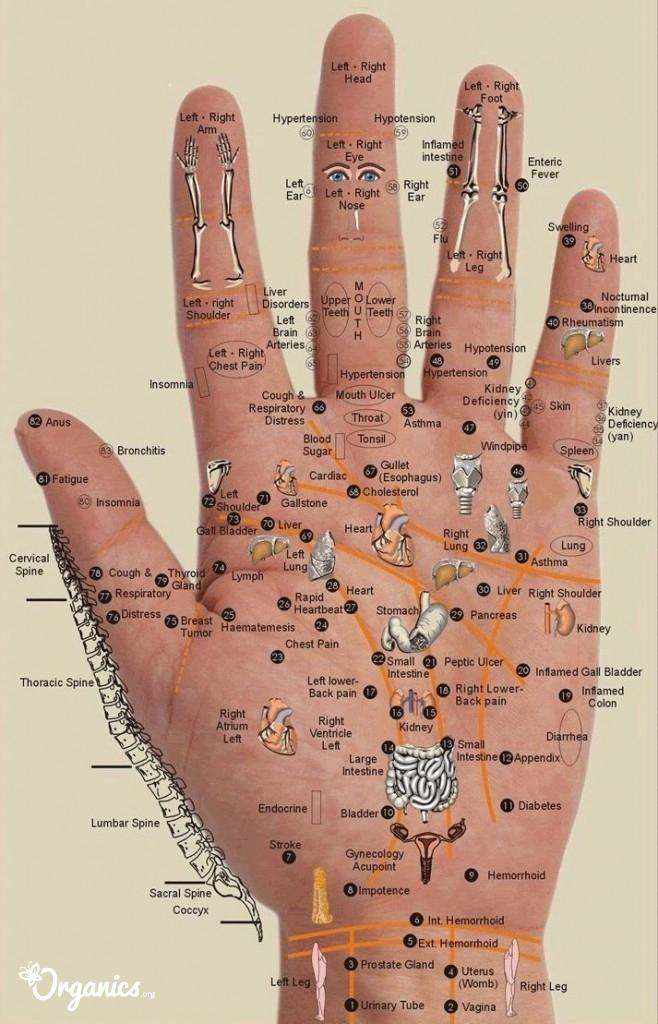 palms-pain-relief diagram