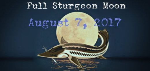 full-moon-in-aquarius-august-7th-2017-a-metamorphic-turning-point-with-intense-energy