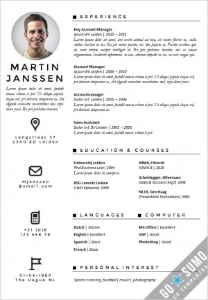 resume critique it project manager resume sample analyst resume