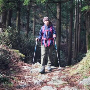 便宜有好貨,登山新手的第一支登山杖 Quechua Forclaz 500開箱心得