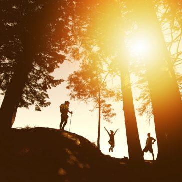 如何使用登山杖,讓你有效減少 21% 的負擔
