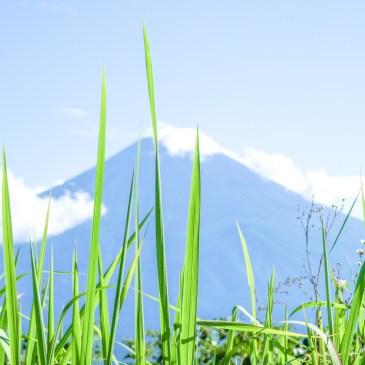 你要去挑戰日本富士山?