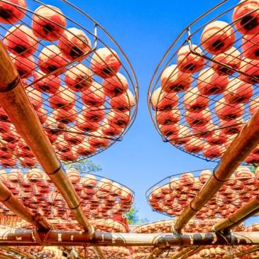 新竹景點|秋收最美的風景,新埔味衛佳柿餅觀光農場