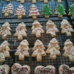 The Twelfth Annual Christmas Cookie Bake-A-Thon