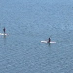 Stand Up Paddleboarding In The Potomac River?