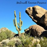 Hiking In The McDowell Sonoran Preserve