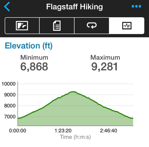Elden Lookout Elevation