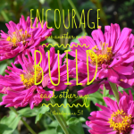 Encourage One Another And Build Each Other Up