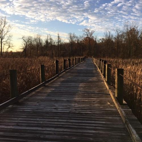 Dyk March Bridge Mount Vernon Trail