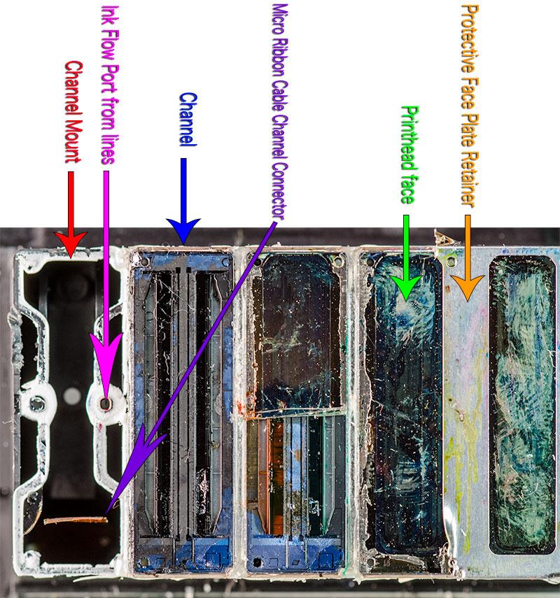 https://i2.wp.com/gotagteam.com/epson/X900_printhead_closeups/illustrations/x900_parts_names.jpg