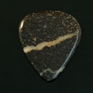 Dinosaur Bone Guitar Pick