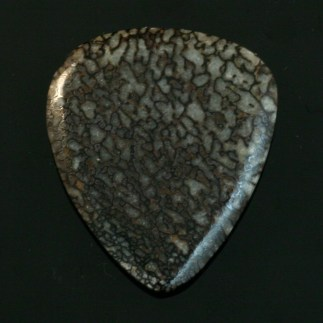 Petrified dinosaur bone guitar pick