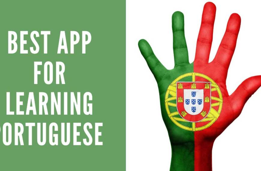 Amazing APP For Learning Portuguese