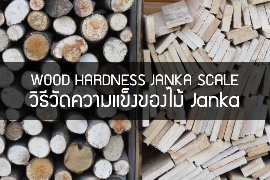 WOOD HARDNESS JANKA SCALE วิธีวัดความแข็งของไม้ Janka