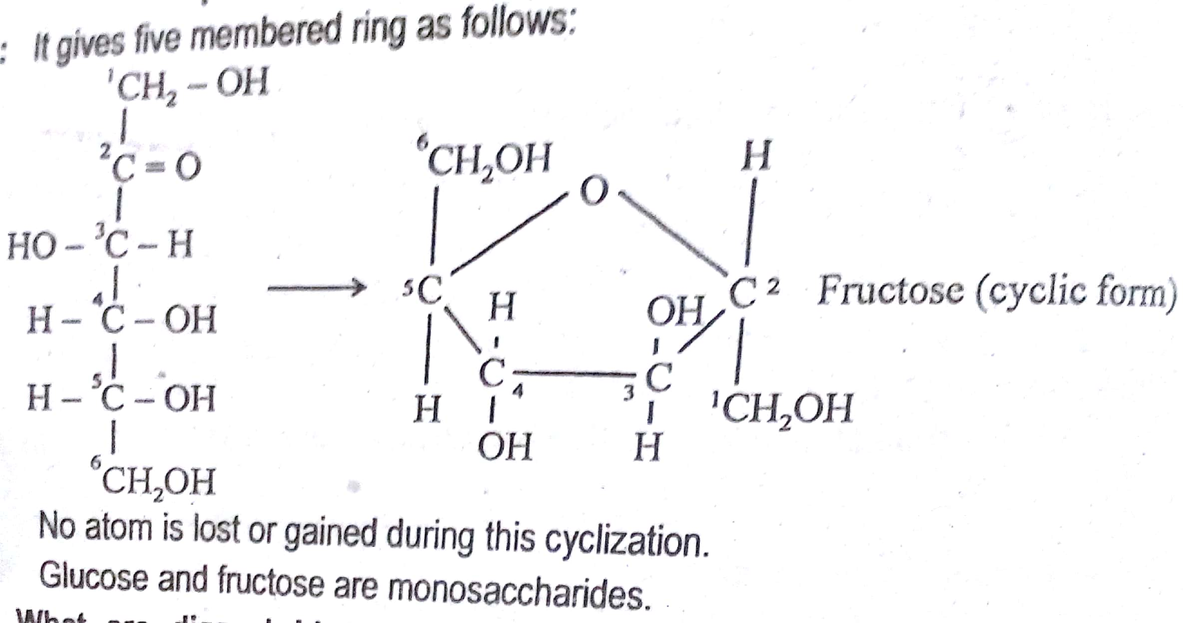 12th Class Chemistry Chapter 14 Macromolecules Short
