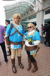 Another Link and Zelda from The Legend of Zelda: Breath of the Wild.