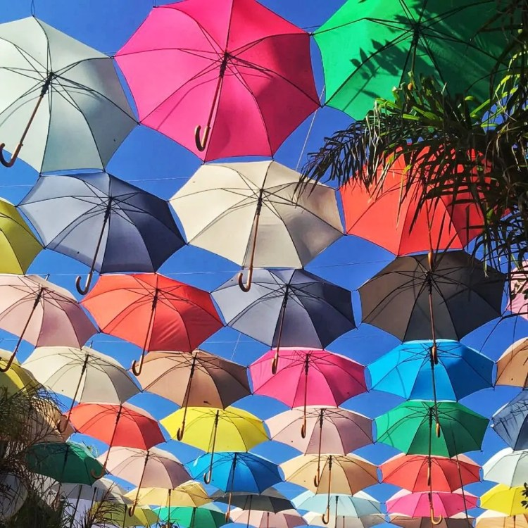 Umbrellas over a Cafe in North Nicosia