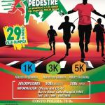 Carrera pedestre - 29 de mayo - CANCELADA POR PANDEMIA