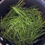 pine-needle-pot-pourri