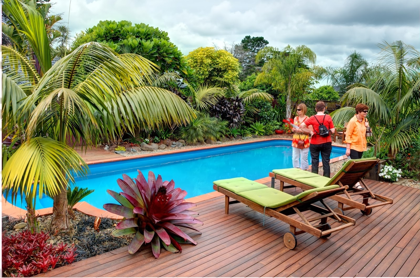 Tropical Plants In Modern Swimming Pool 9065 House