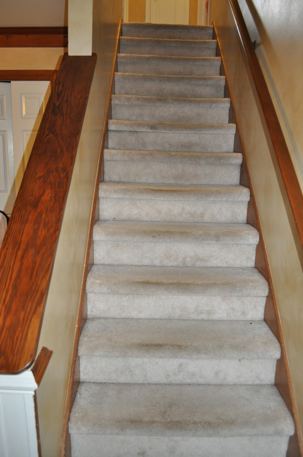 15 Best Bullnose Stair Tread Carpets Stair Tread Rugs Ideas | Best Rug For Stairs