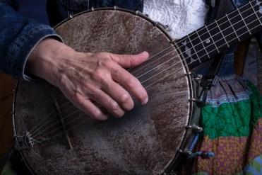 5-string banjo