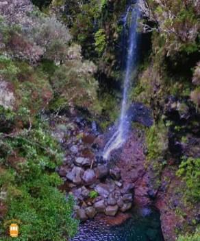 Levada das 25 Fontes e do Risco - Madeira 17