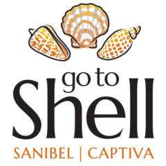 Go To Shell